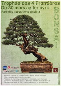 METZ (57) 30 mars - 1 avril 2012 trophée des 4 frontières 12033010