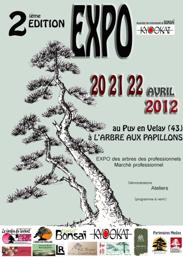 PUY en VELAY (43) 20 - 22 avril 2012 12042410