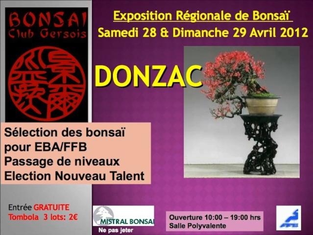 DONZAC (82) 28 et 29 avril 2012 exposition regionale de bonsai 12042810