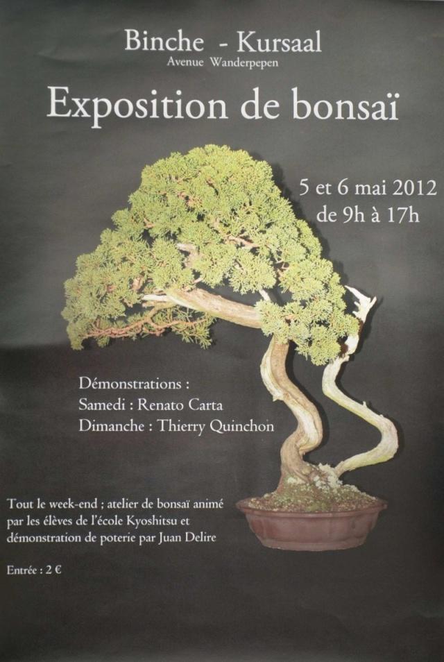 BINCHE (BELGIQUE) 5 et 6 mai 2012 12050510