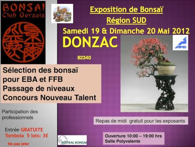 DONZAC (82) 28 et 29 avril 2012 exposition regionale de bonsai 12051910