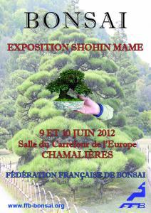 CHAMALIERES (63) 9 et 10 juin 2012 12060910