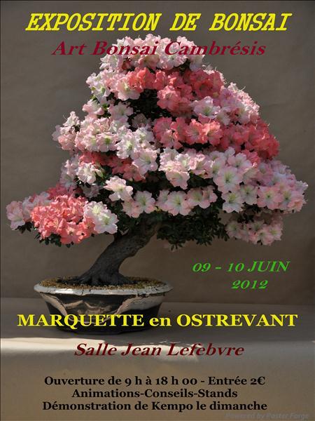 Marquette en Ostrevent (59) 09-10 juin 2012 12060911
