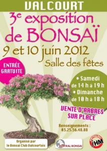 Valcourt (52) 9 - 10 juin 2012 12060912