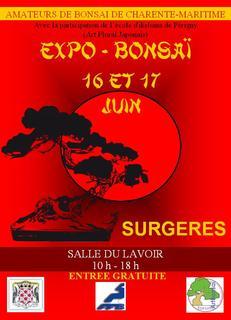 expo surgeres (17) 16 et 17 juin 2012 12061610