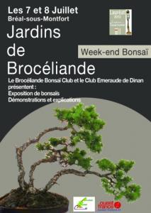 breal sous montfort 7 et 8 juillet 2012 expo bonsai 12070211