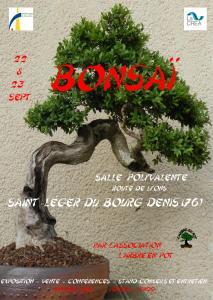 St Léger Du Bourg Denis (35) les 22,23 Septembre 2012 Expo de l'Arbre en Pot ROUEN  12092210