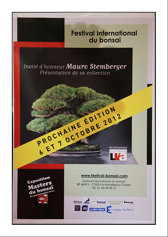 SAULIEU (21)  6 et 7 octobre 2012 Festival International du bonsai 12100710