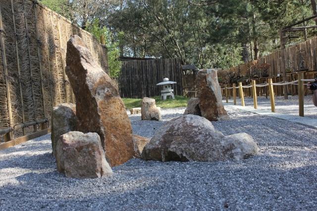 arboretum mialet 10mars 2012 Img_1520