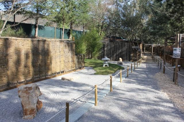 arboretum mialet 10mars 2012 Img_1616