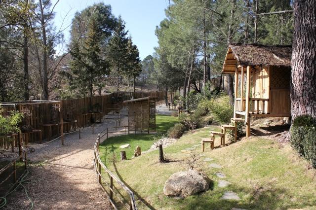 arboretum mialet 10mars 2012 Img_1620