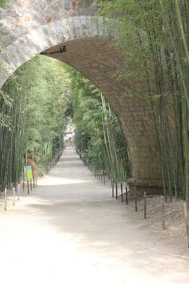 bambouseraie anduze Img_1621