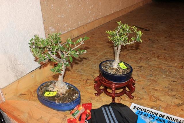 exposition Toulouges les 23-24 juin 2012 par  Le club Kobayashi  Img_2116