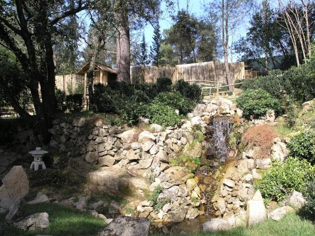arboretum mialet 10mars 2012 P3109410