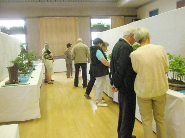 expo LANVALLAY 28 mai 2011 P5290033