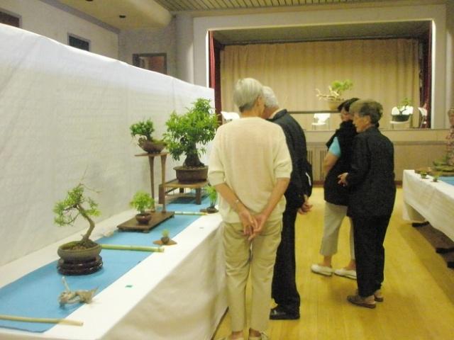 expo LANVALLAY 28 mai 2011 P5290035
