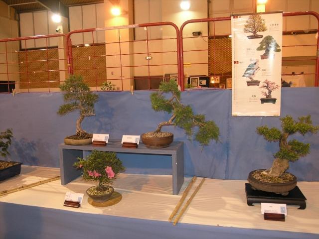 exposition Toulouges les 23-24 juin 2012 par  Le club Kobayashi  P6230519