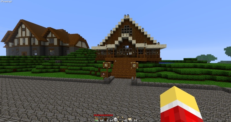 Your House In Beta [Pics] 2011-011