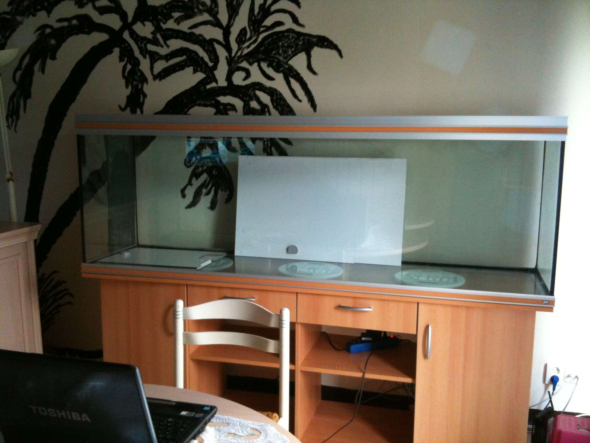 Bac 650 L future biotope amazonien Img_0518