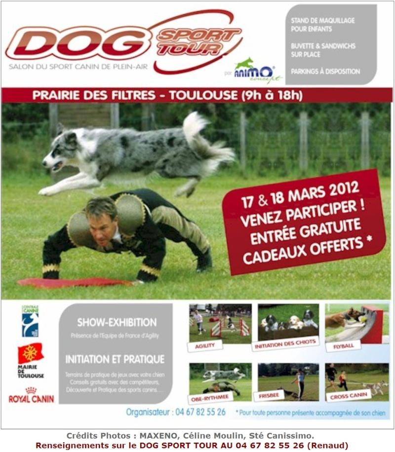 Dog Sport Tour : idée de sortie pour les Toulousains  Dog_sp10