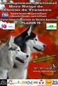 National de chiens de traîneau hors neige - 10 & 11 Décembre 2011 Affich10