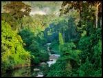 La rivière des Songes