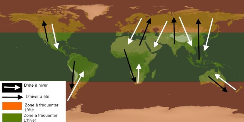 Prejet: Un tour du monde à pied et en stop. Map_mo10