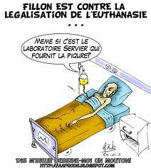 Le Permis de tuer bientôt légalisé ? Partie 1 : L'euthanasie, explications et positions Euthan15