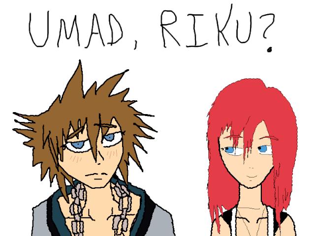 Kingdom Hearts Shenanigans Soraxk10
