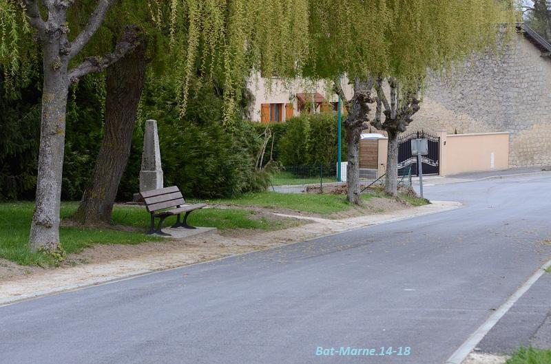 Le Monument au Capitaine MALPAS du 170e R.I. à Loivre (51) Dsc_3410