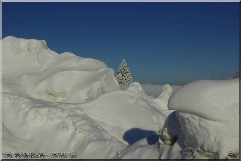 La Chartreuse... sous son manteau blanc !! Imgp5717