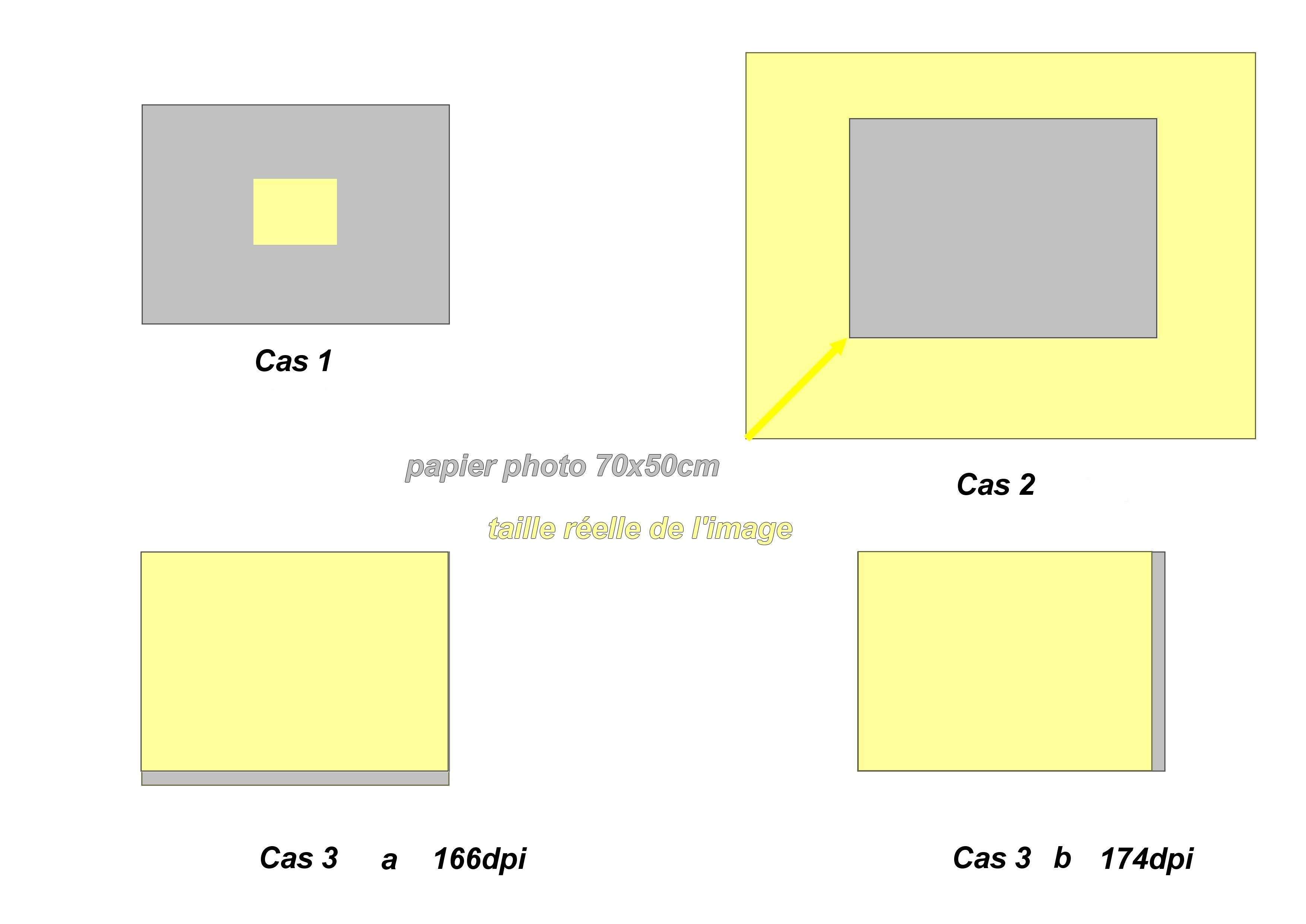 Tous les Ophrys de France - Page 3 Sans_t19