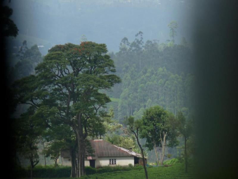 Des photos et des histoires.. Sri10