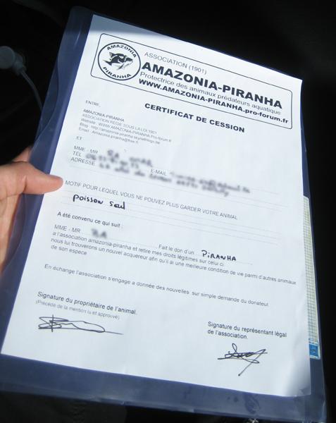 [Association Amazonia-Piranha]  Certi_10