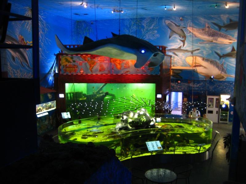 [Reportage] Présentation de l'aquarium public de PRAGUE (République tchèque) Prague17