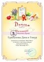УЧАСТИЕ В КОНКУРСАХ Diplom12