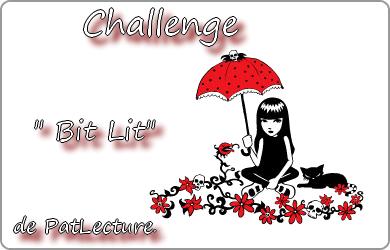 Challenge Bit-Lit 2012 Bit10