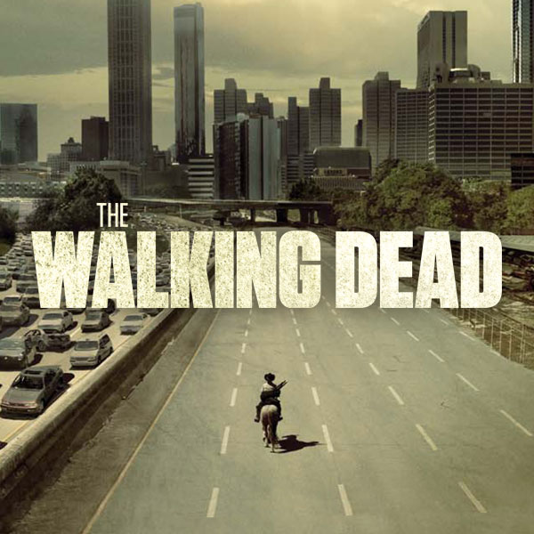 THE WALKING DEAD Wd10