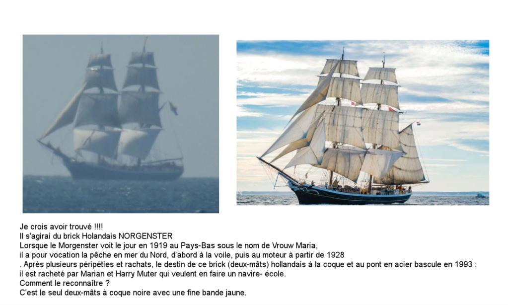 [ Marine à voile ] Vieux gréements - Page 8 Realis11