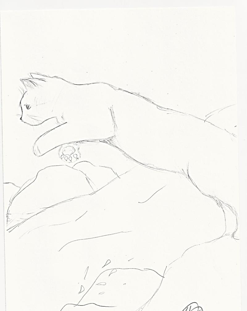 Art Gallery Example!  Cat_bm10