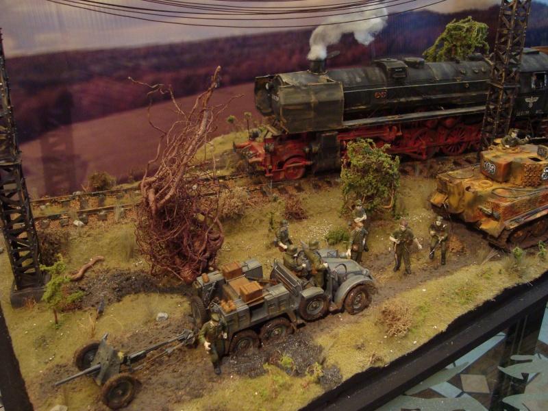 dio de loco br52 Dsc06815