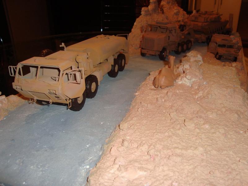 dio convoit en irak Dsc07912
