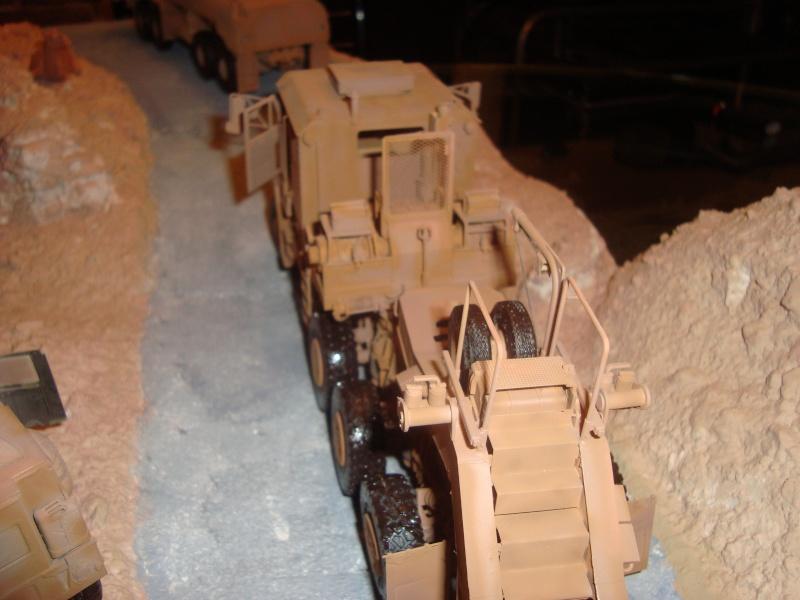 dio convoit en irak Dsc07914