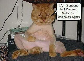 Lolcats thread! - Page 6 31252710