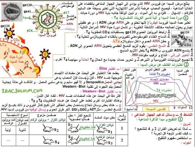 تلخيص درس اضطرابات النظام المناعي وبعض وسائل تدعيمه - مادة علوم الحياة والأرض للسنة الثانية بكالوريا  211