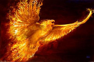 Les phoenix Efd3fa10
