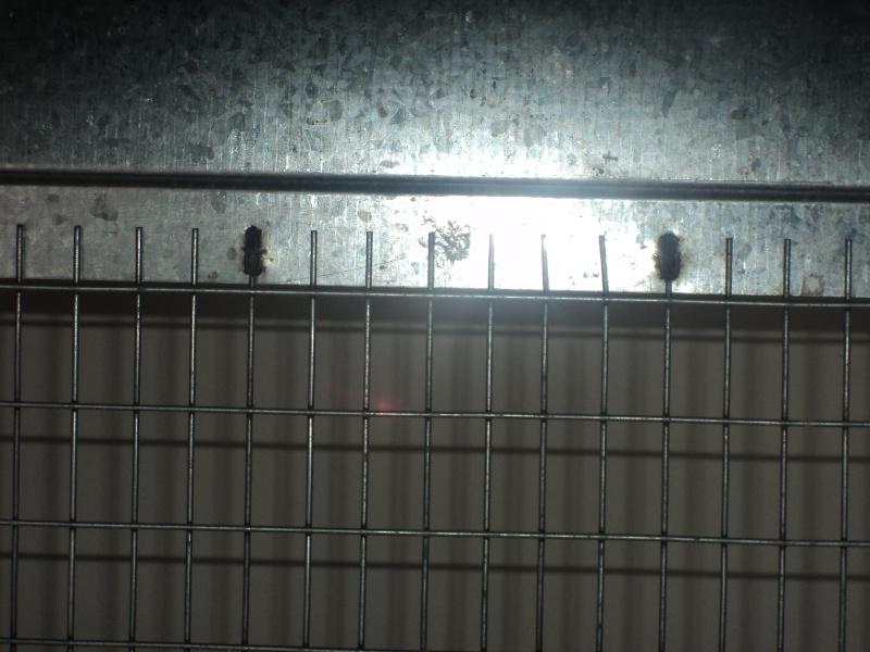 Ma cage ( Priscilla) 27000310