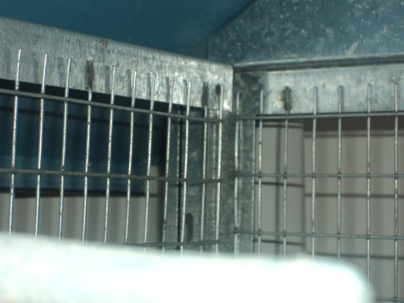 Ma cage ( Priscilla) 27000410