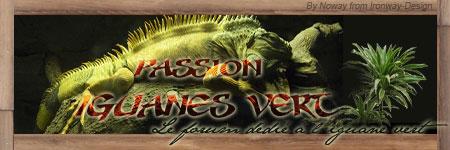 passion-reptiles