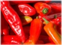 Чилли, chilli (чили, chili) Red10
